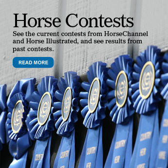 Horse Contests