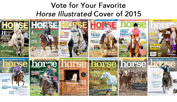Horse Illustrated Cover Poll
