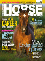 February, 2009 Horse Illustrated