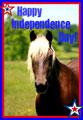 Horse 4th of July 2 eCard