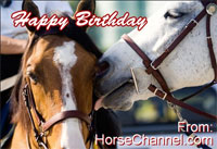 Create your own Horse eCard