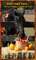 Horse Happy Thanksgiving eCard
