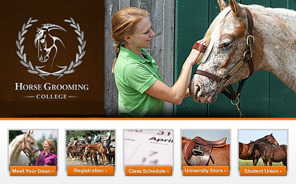 Horse Grooming College
