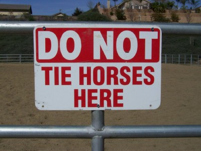 Life with Horses - A Commonsense Code of Conduct