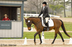 Holly and Dexter dressage