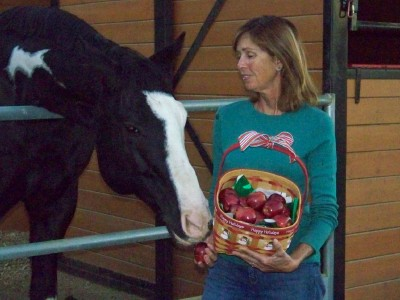 Life with Horses - My Nifty Thrifty Gifty Guide