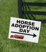 Horse Adoption Day at the KyEHC