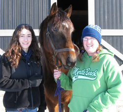 Lotawana is being fostered by two Georgetown College Equine Scholars