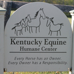 Diary of a Horse Rescue- KyEHC