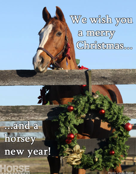 Share horses on Facebook for Christmas, Hanukkah and New Year's Day – Horse  Illustrated