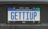 Gettiup license plate