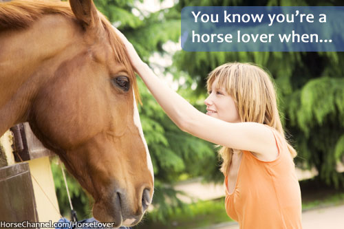 Horse Lover