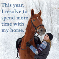 New Year's Resolution horse