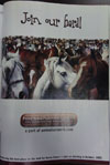 2005 HorseChannel ad