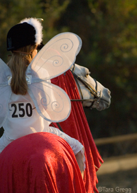 Horse show costume classes can be great ways to bond with your horse