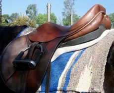The wedge pad balances out the saddle on the horses back