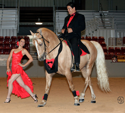 Friends of Sounds Horses' EquiTheater is designed to attract a greater interest in equine activites
