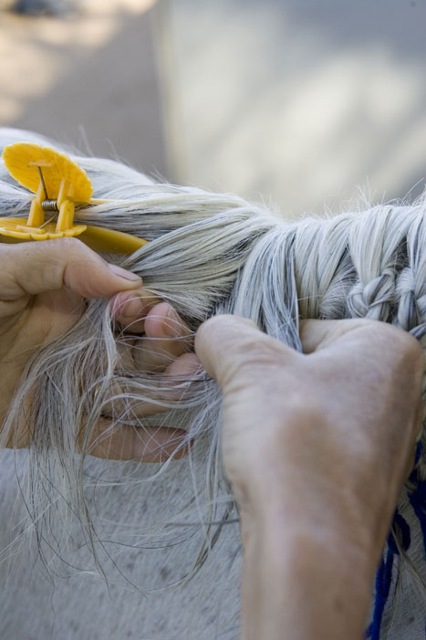 Horse Mane Braiding Step 3