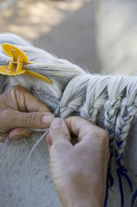 Horse Mane Braiding Step 4