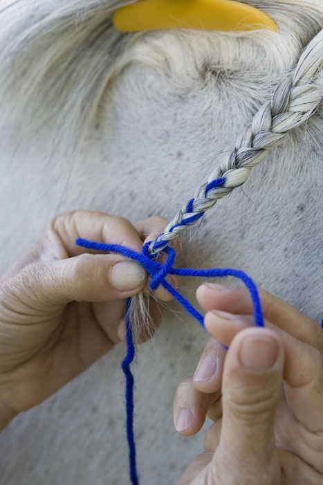 Horse Mane Braiding Step 11