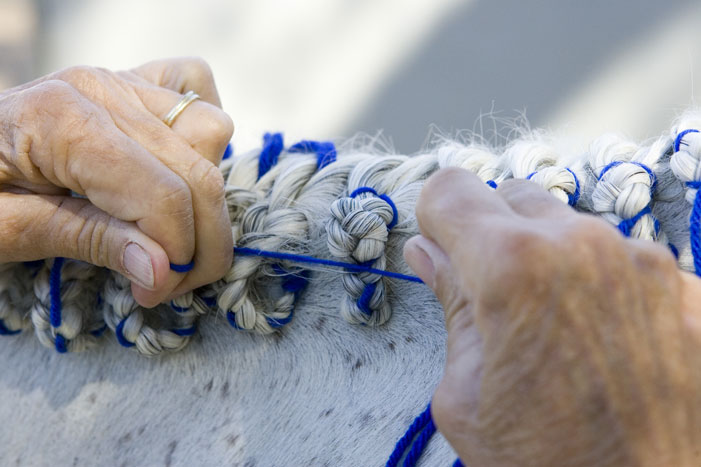 Horse Mane Braiding Step 26