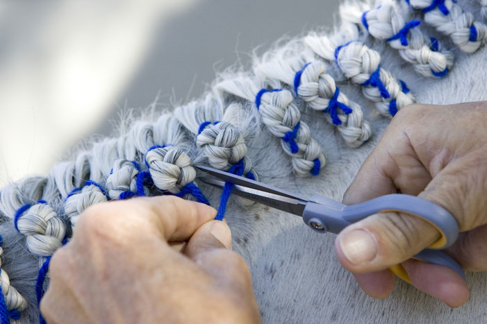 Horse Mane Braiding Step 27