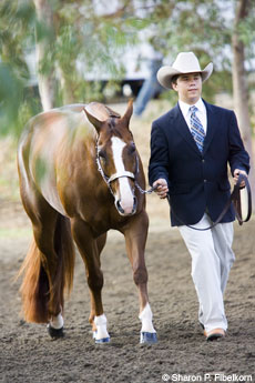 Tips on improving your showmanship abilities
