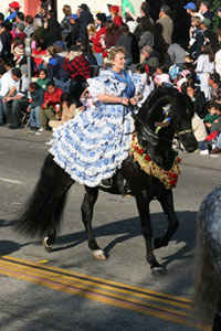 The festival includes horses such as the Andalusians and Lusitanos as well as many other Spanish-bred horses