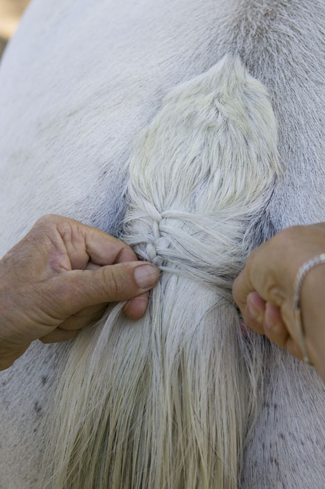 Tail Braiding Step 2