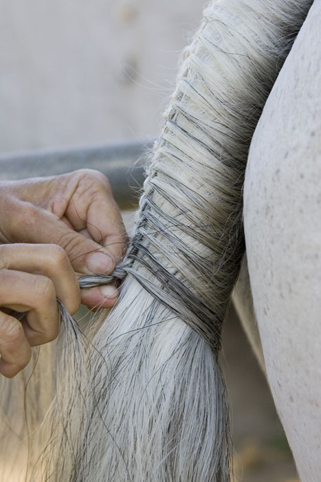 Tail Braiding Step 5a