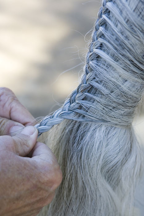 Tail Braiding Step 5b