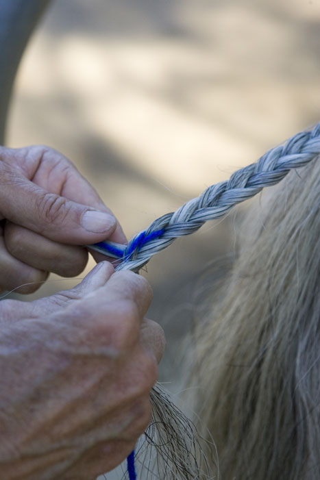 Tail Braiding Step 6