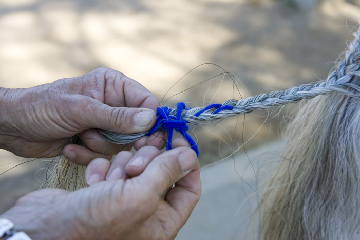 Tail Braiding Step 7