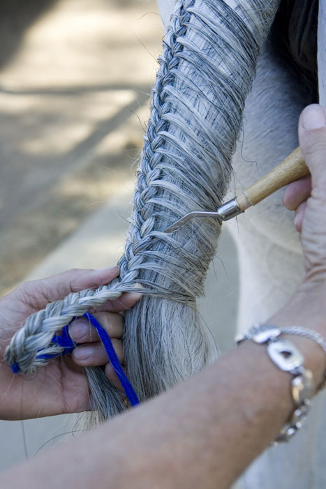 Tail Braiding Step 8