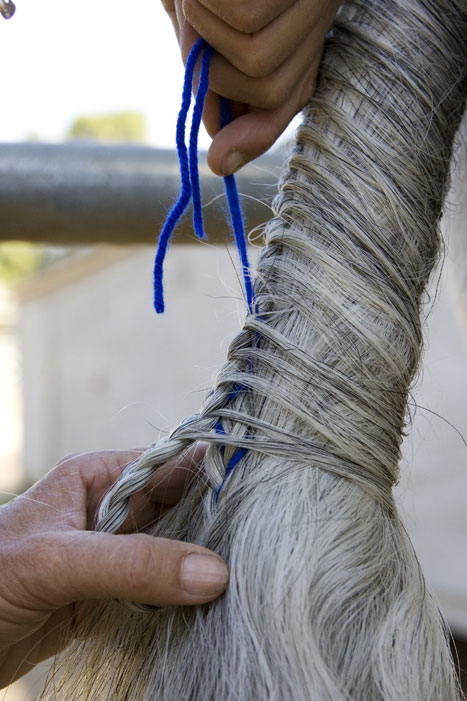 Tail Braiding Step 9b