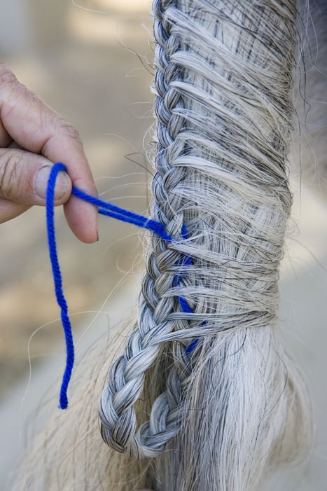 Tail Braiding Step 10