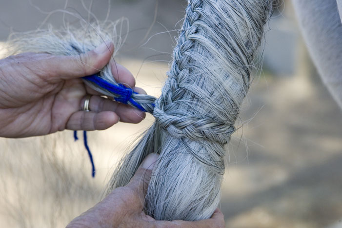 Tail Braiding Step 18