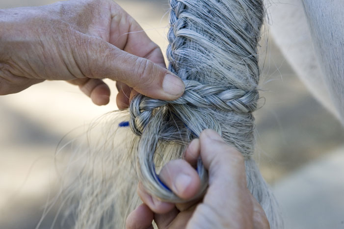 Tail Braiding Step 19