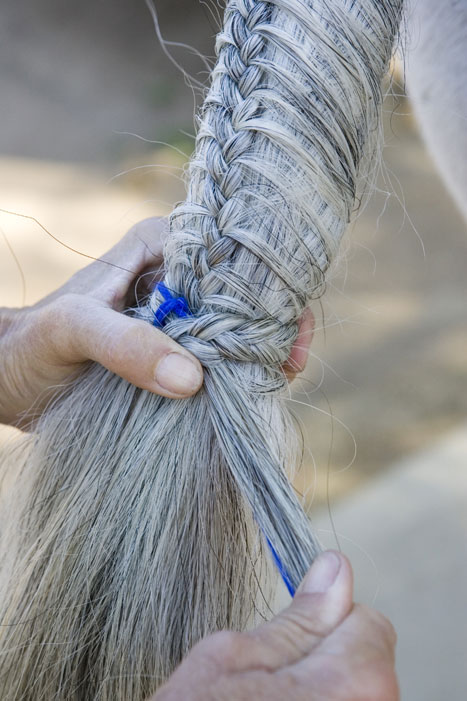 Tail Braiding Step 20
