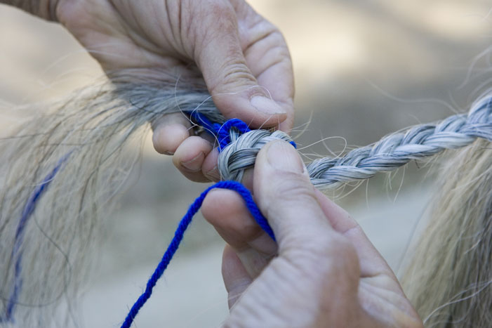 Tail Braiding Step 12