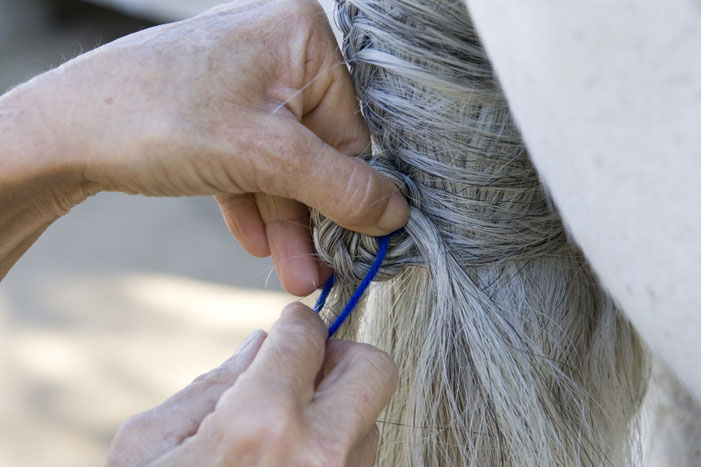 Tail Braiding Step 14