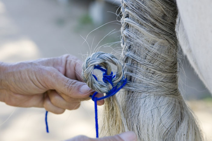 Tail Braiding Step 15