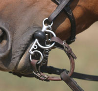 The Pelham gives greater control to the rider than a snaffle
