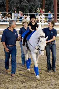 Interview about about therapeutic horses and their impact