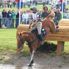 2010 World Equestrian Games- Eventing