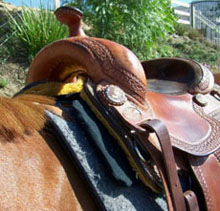 The foam shim helps increase rider and and horse comfortability as well