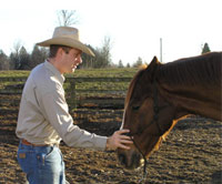 Build respect with your horse without causing fear