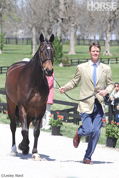 William Fox-Pitt and Bay My Hero