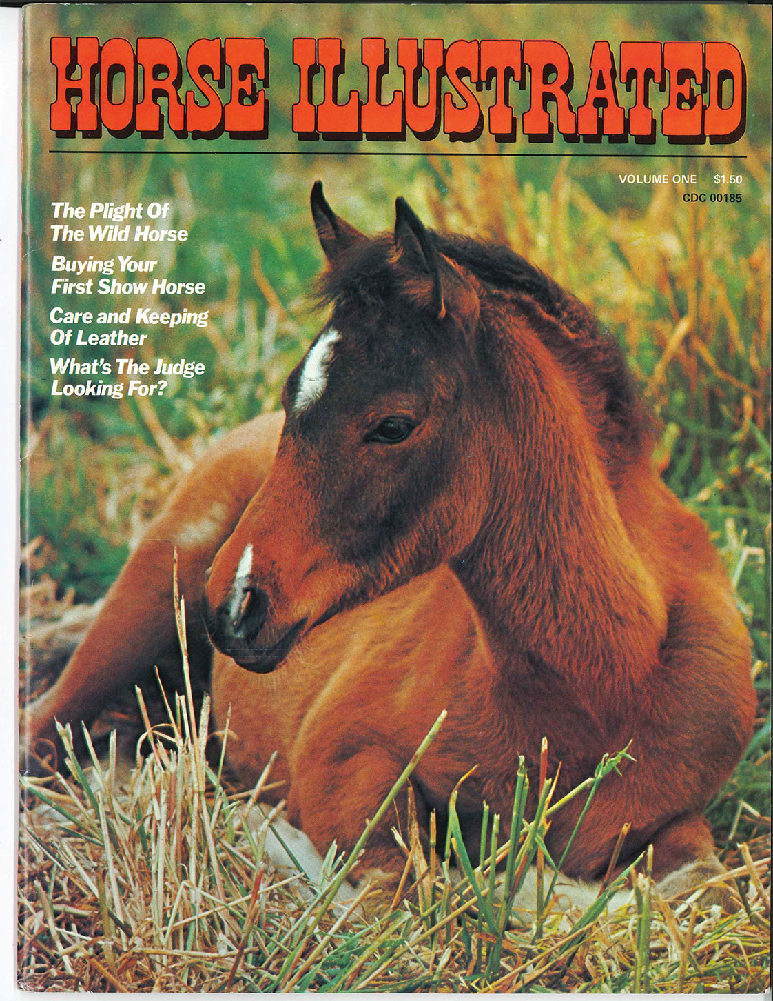 Horse Illustrated first issue