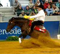 The 2008 FEI World Reining Championship is being held in Italy